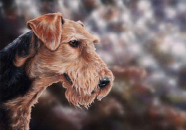 airedale-terrier-4306