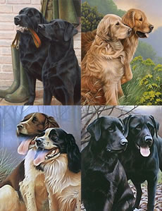 All 4 Collector Editions Gun Dogs