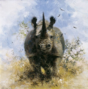 Black Rhino - Cameo Collection