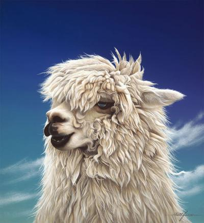 Britney - Alpaca