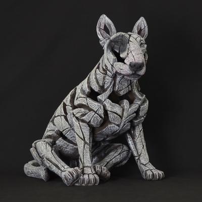 Bull Terrier - White