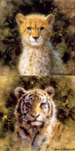 Cheetah & Tiger Cub - Mini Collection
