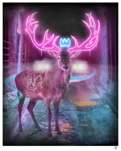 Deer in the Highlights by JJ Adams