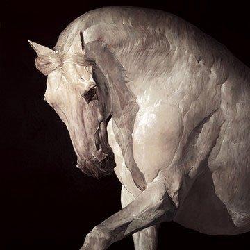 equus-7759