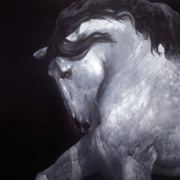 equus-iii-12150