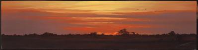evening-sun-3205