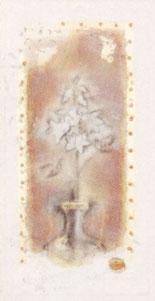 fleur-ii-1923