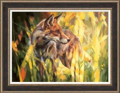 Fox in Dappled Light