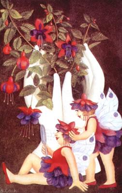 fuchsia-fairies-7303