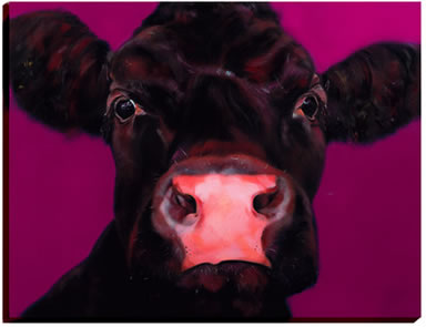 full-fat-brown-cow-6245