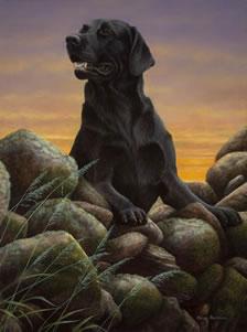 game-boy-black-labrador-3856