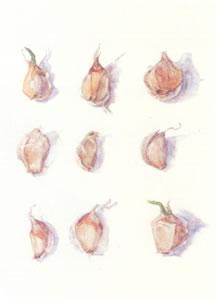 garlic-cloves-2584