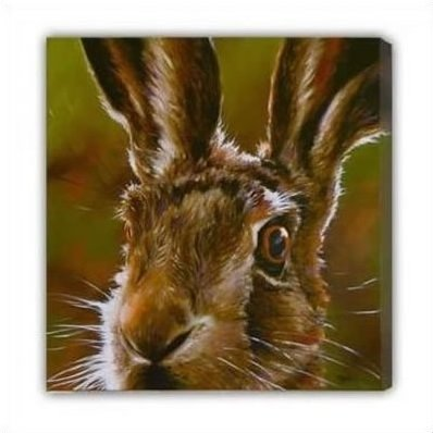 hare-canvas-7173