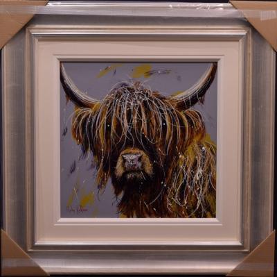 Highland Cow iii