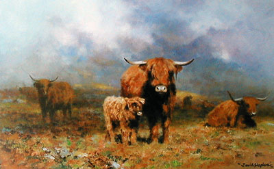 highland-mist-2894