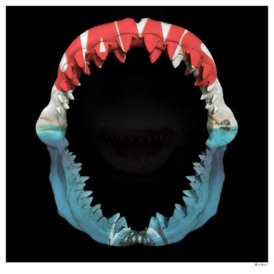 Jaws- Large