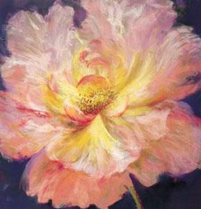 la-bella-rosa-1452