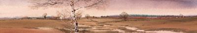 landscape-v-2151