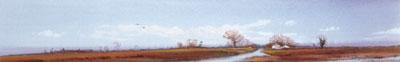 landscape-vi-2150