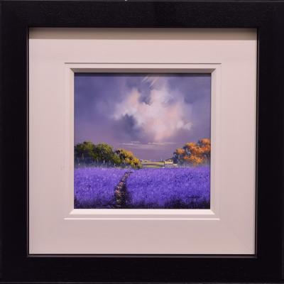 Lavender Fields II (12 x 12) by Allan Morgan