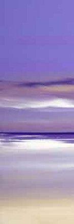 lilac-fusion-i-13074