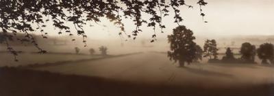 natures-glory-11963