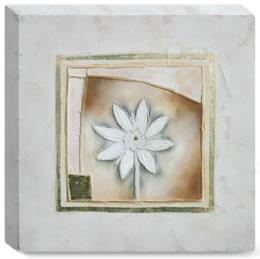 petit-fleur-i-box-canvas-3299