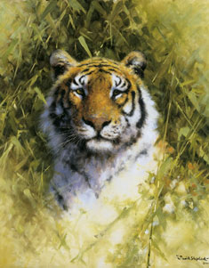 portrait-of-a-tiger-2902