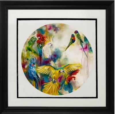 Pretty Polly- Large