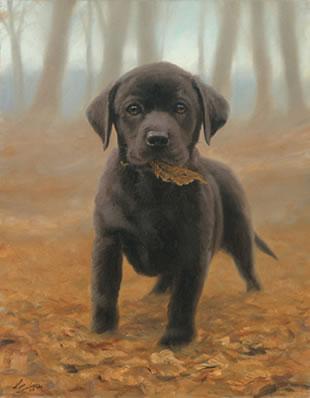 Puppy Leaves - Black Labrador Pup