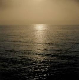 reflection-5062