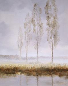 reflections-i-2249