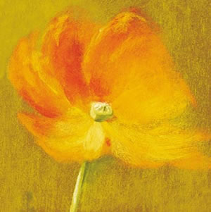 slice-of-life-poppy-3309