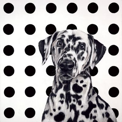 Spot The Dog - Canvas by Hayley Goodhead