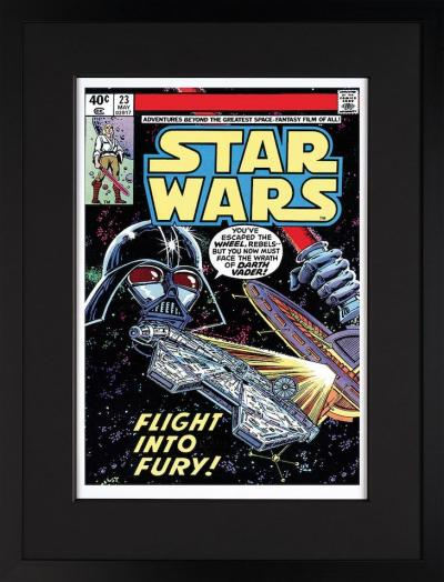 Star Wars # 23 - Flight Into Fury
