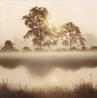 summer-haze-7053