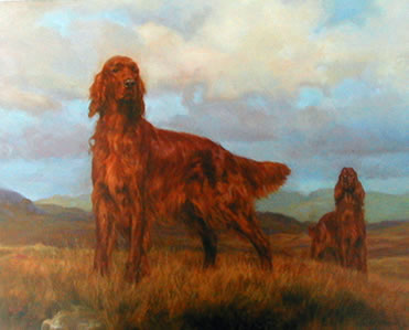 teamwork-irish-setter-3715