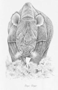 Temper Temper - Rhino