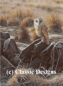 the-hunter-barn-owl-6307