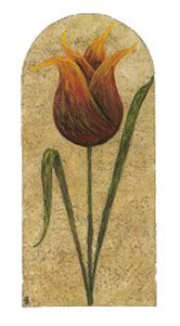 treasured-tulips-2782