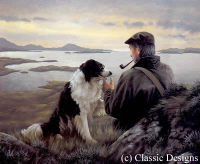unspoken-words-border-collie-6801