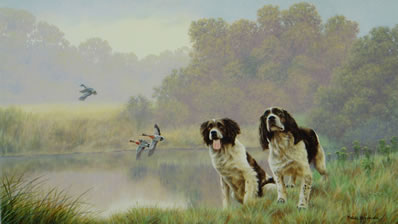 watersports-springer-spaniels-1507