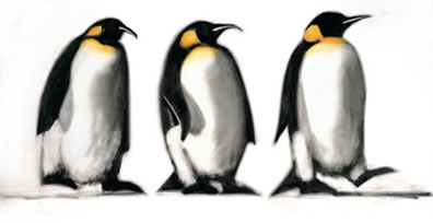 We Three Kings - Penguins by Paul Powis