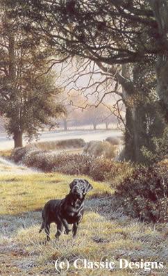 woodland-call-black-labrador-6306