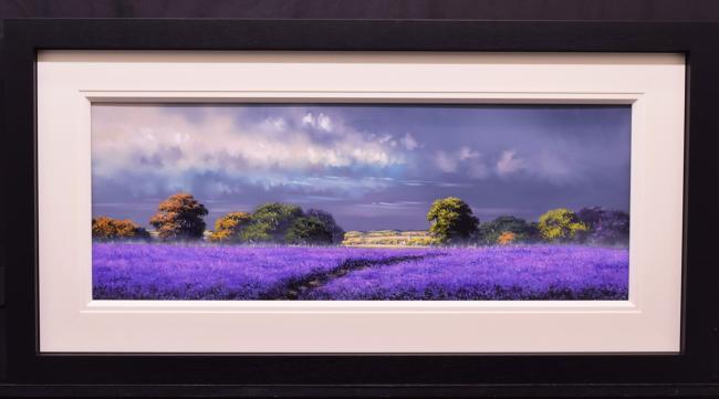 Bluebell Pathway by Allan Morgan