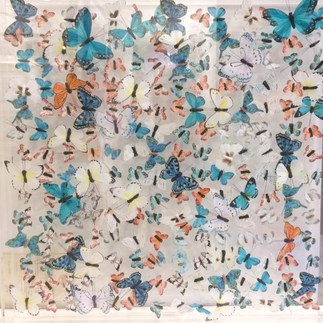 Butterfly Installation 750 x 750by Michael Olsen