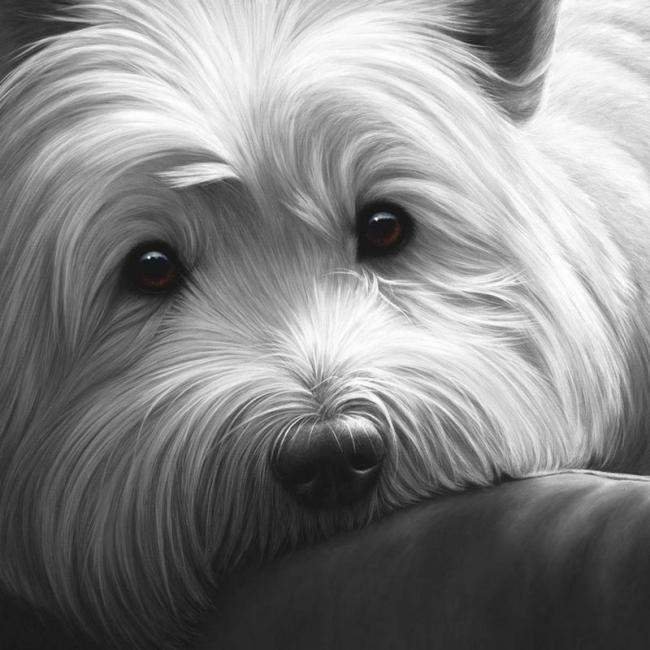 Dog Tired West Highland Terrier by Nigel Hemming