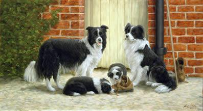 Family Ties - Border Collies by John Silver