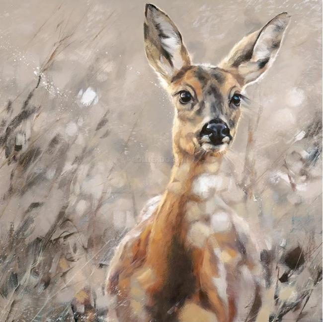 Fawn by Debbie Boon