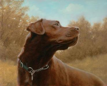 Hot Chocolate - Chocolate Labrador by John Silver